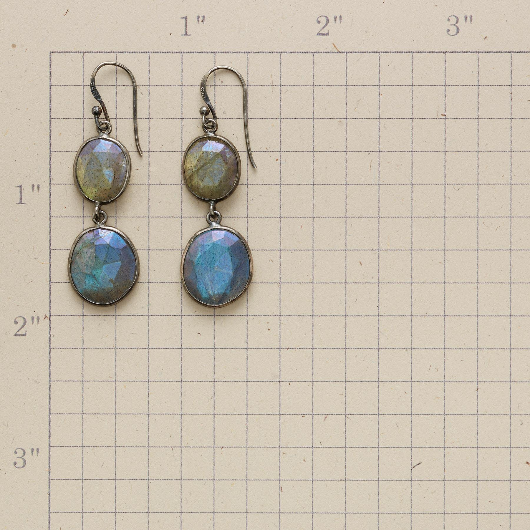 TWO OF A KIND EARRINGS: View 2