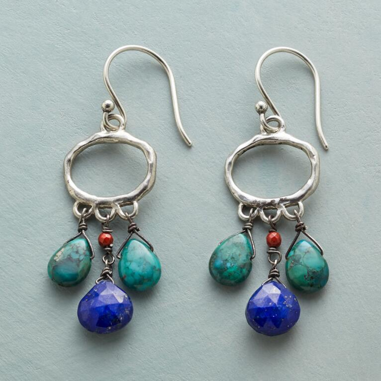 CALL OF THE WEST EARRINGS