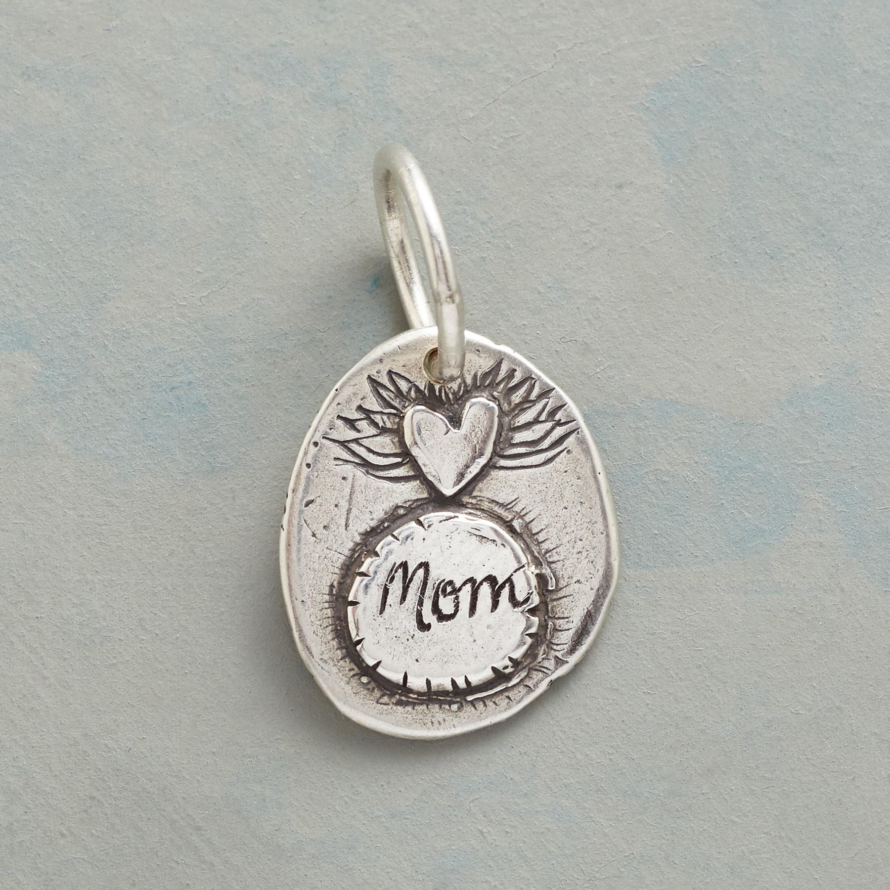 STERLING SILVER NURTURE + PROTECT CHARM: View 1
