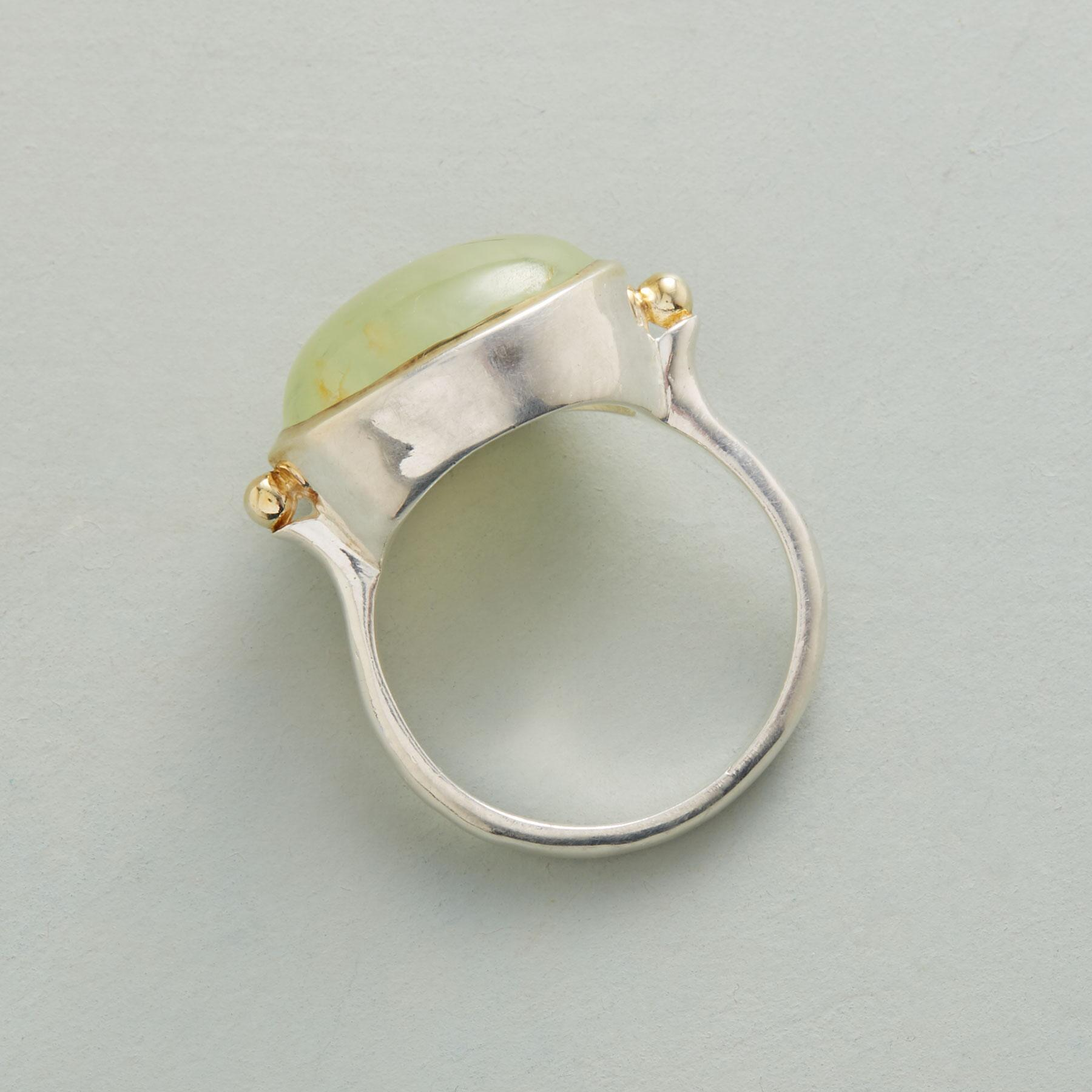 RAINFOREST RING: View 2