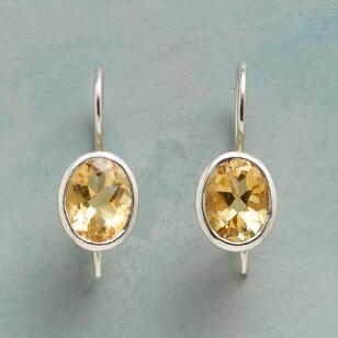 GOLDILIGHT EARRINGS