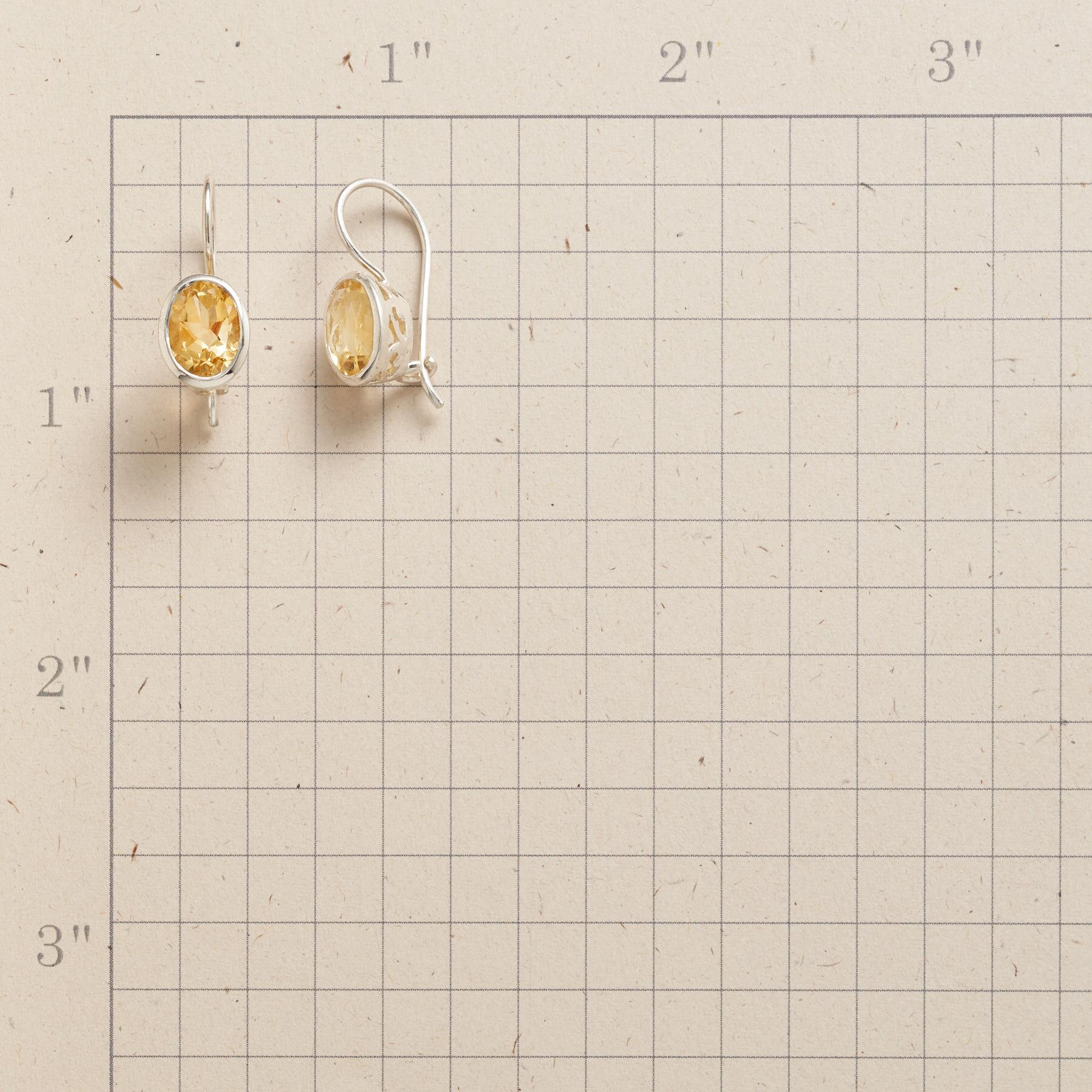 GOLDILIGHT EARRINGS: View 2