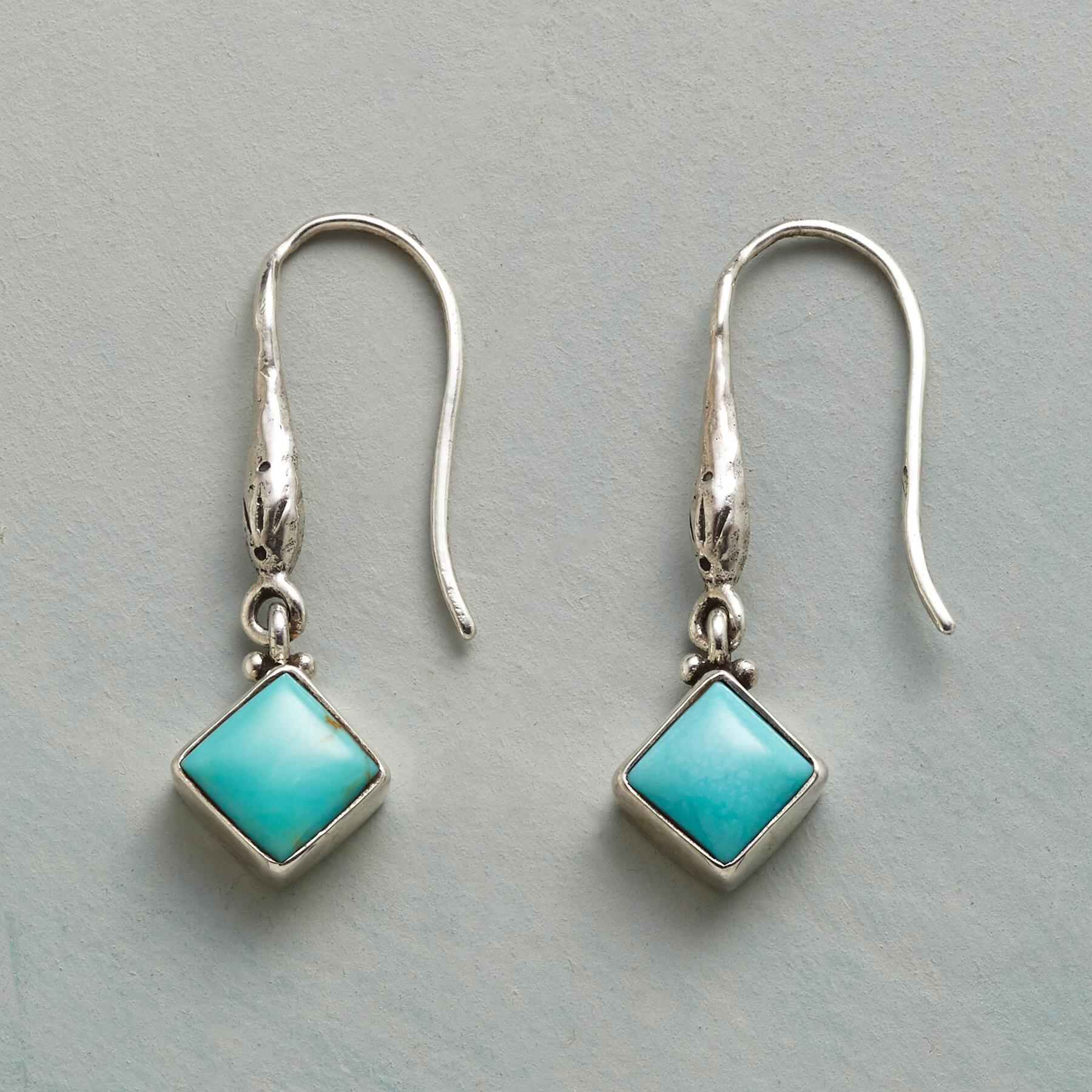 SYLVA EARRINGS: View 1