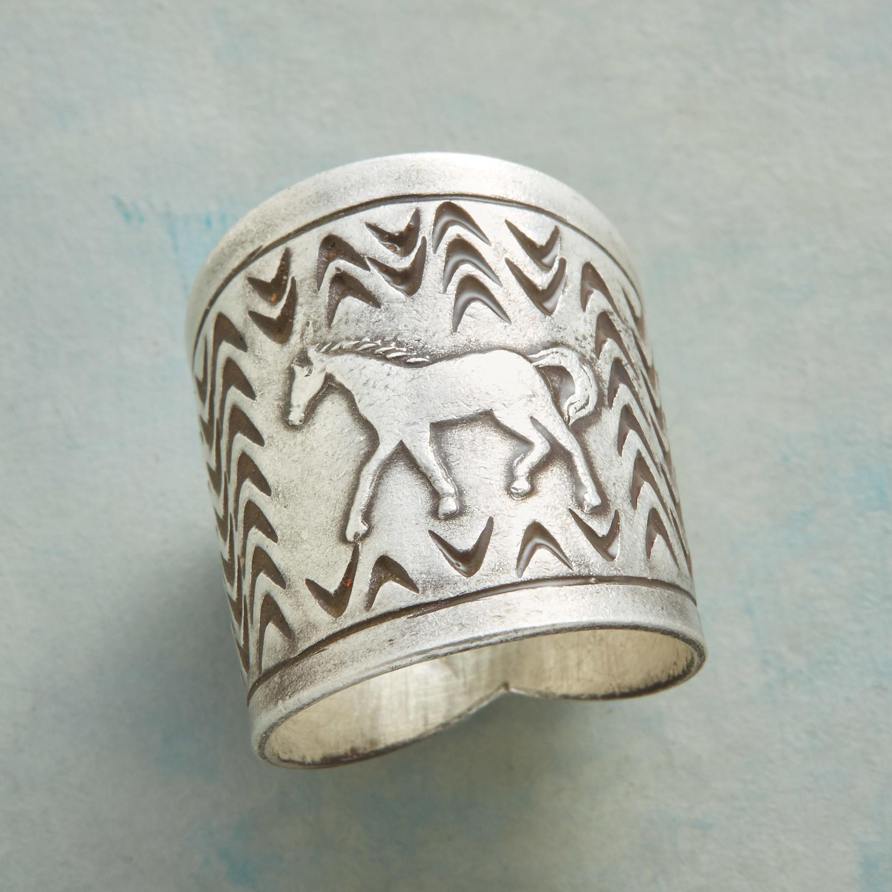STERLING PONY RING: View 1