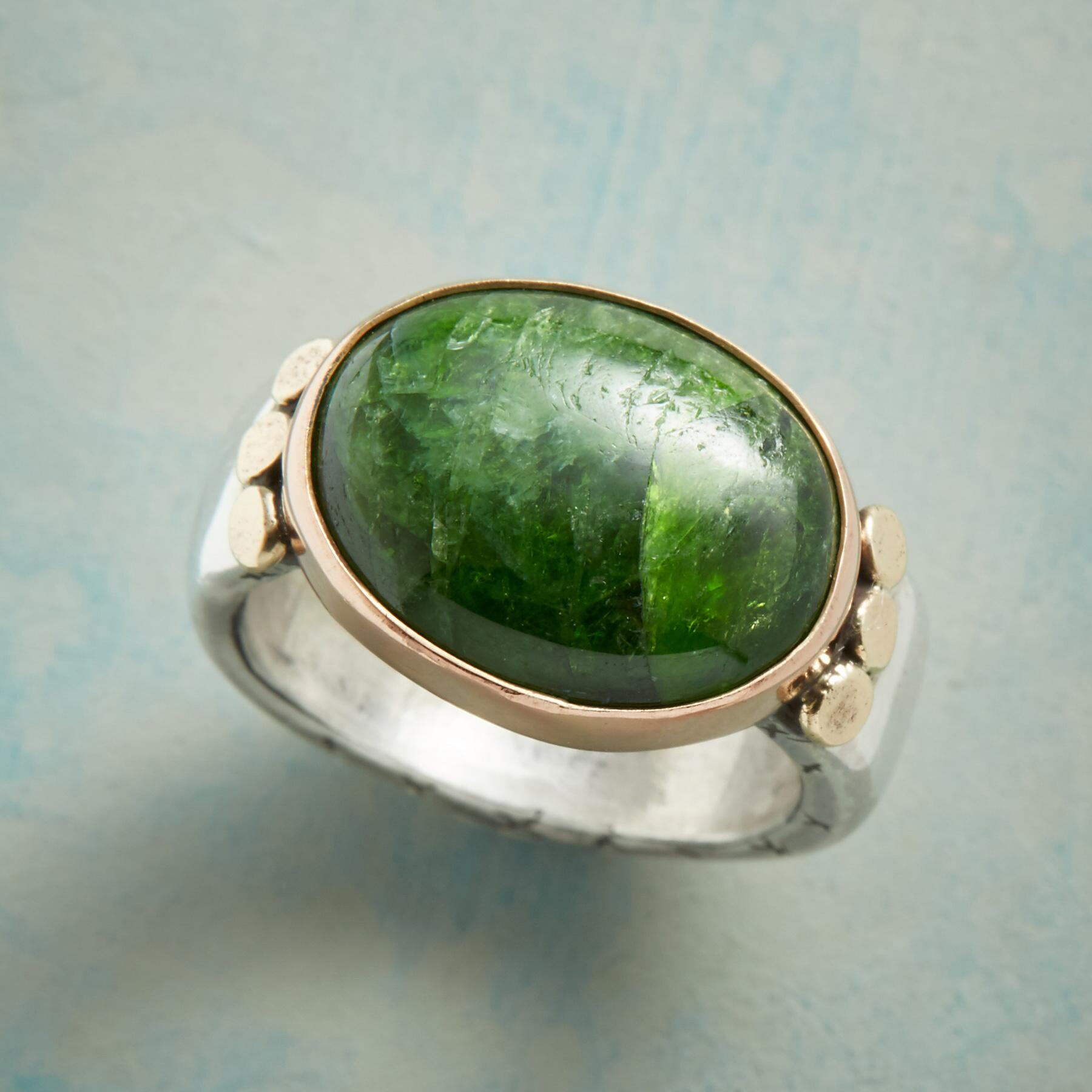 FERN FOREST RING: View 1