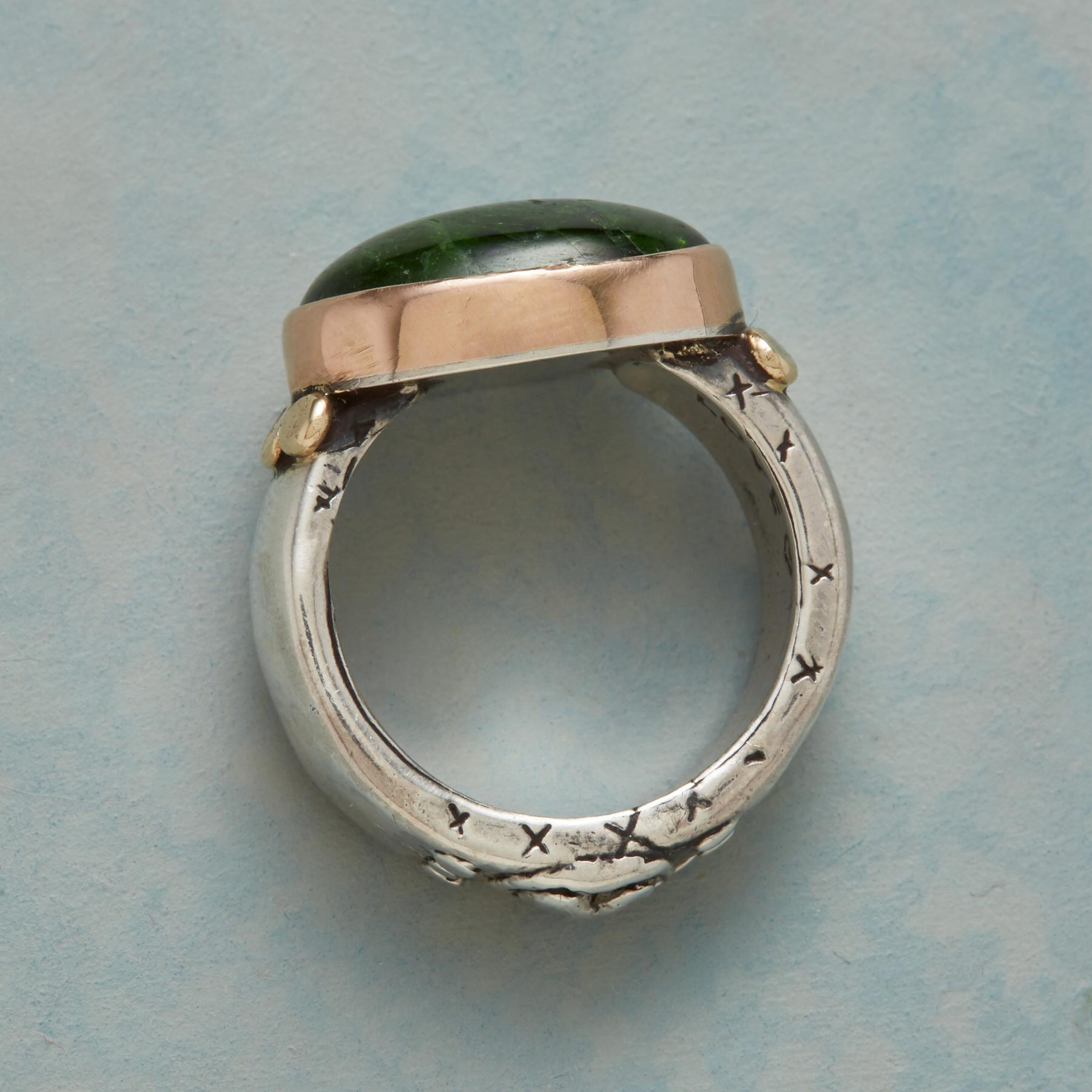 FERN FOREST RING: View 2