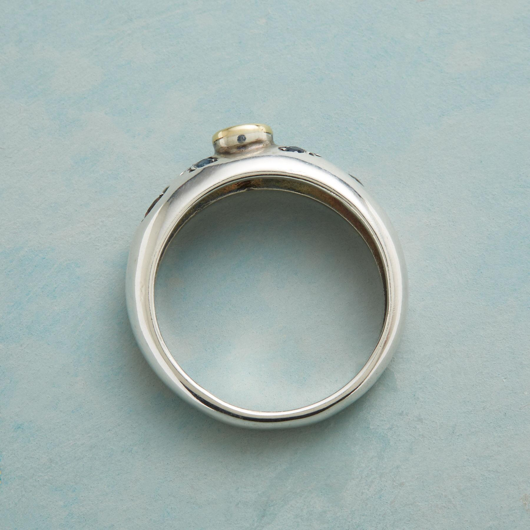 BANDEROLE RING: View 2