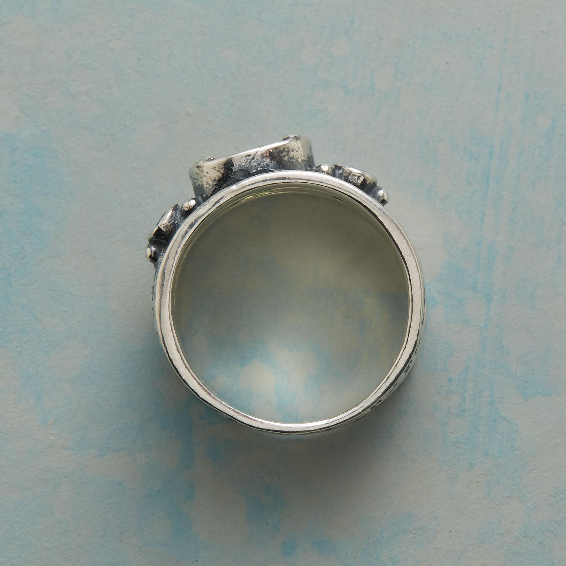 THE SPACE BETWEEN RING: View 2