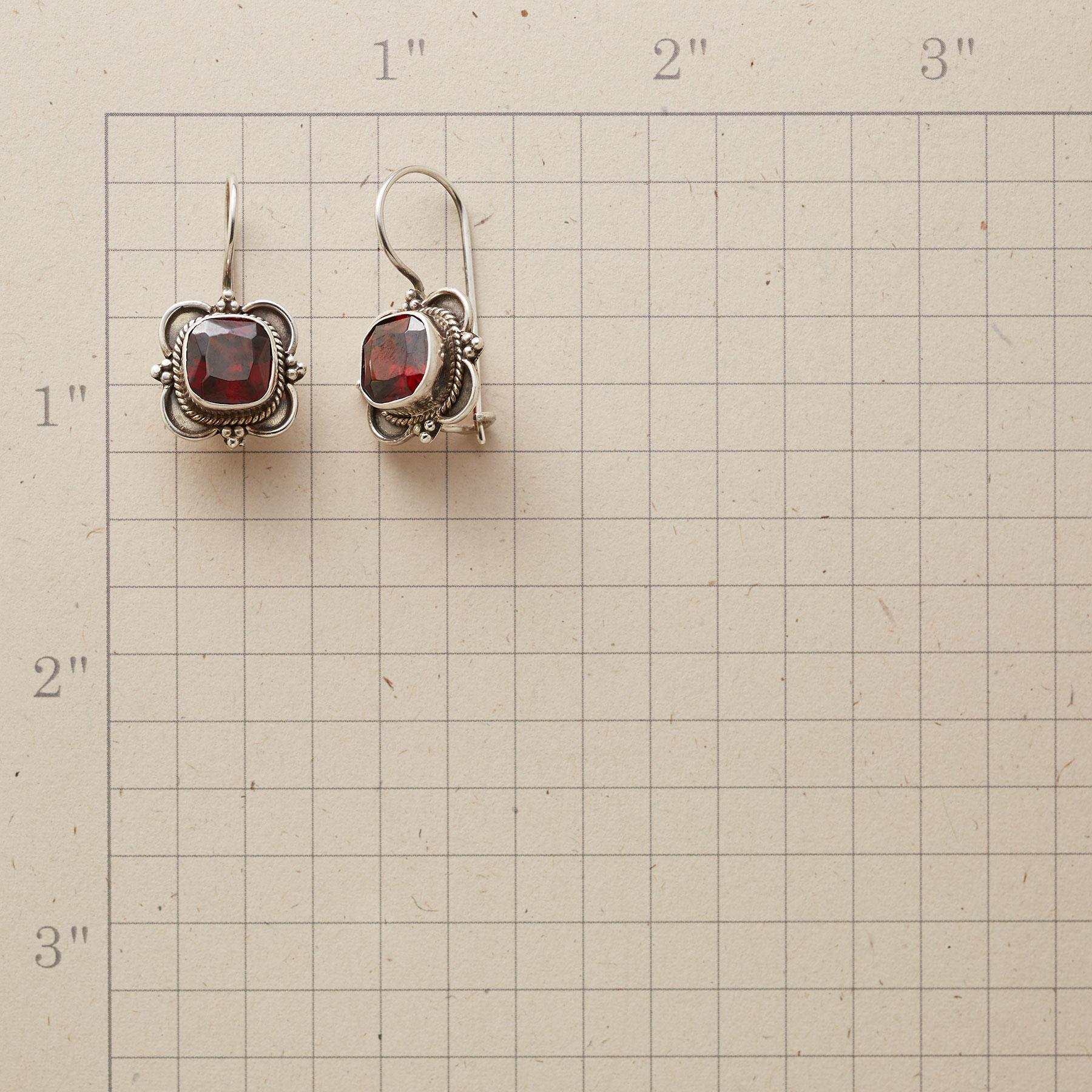 GARNET CARTOUCHE EARRINGS: View 2