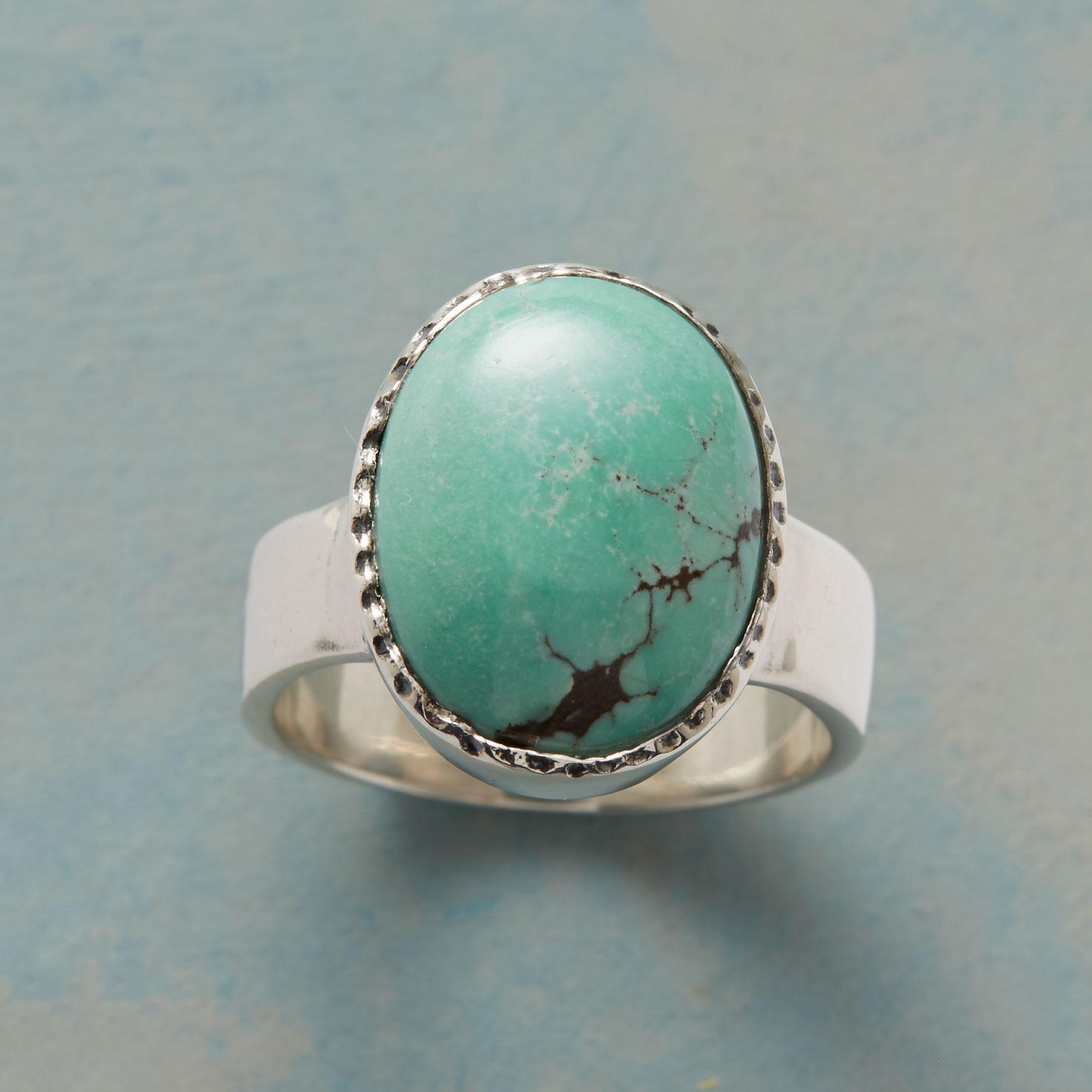 BOLDLY TURQUOISE RING: View 1