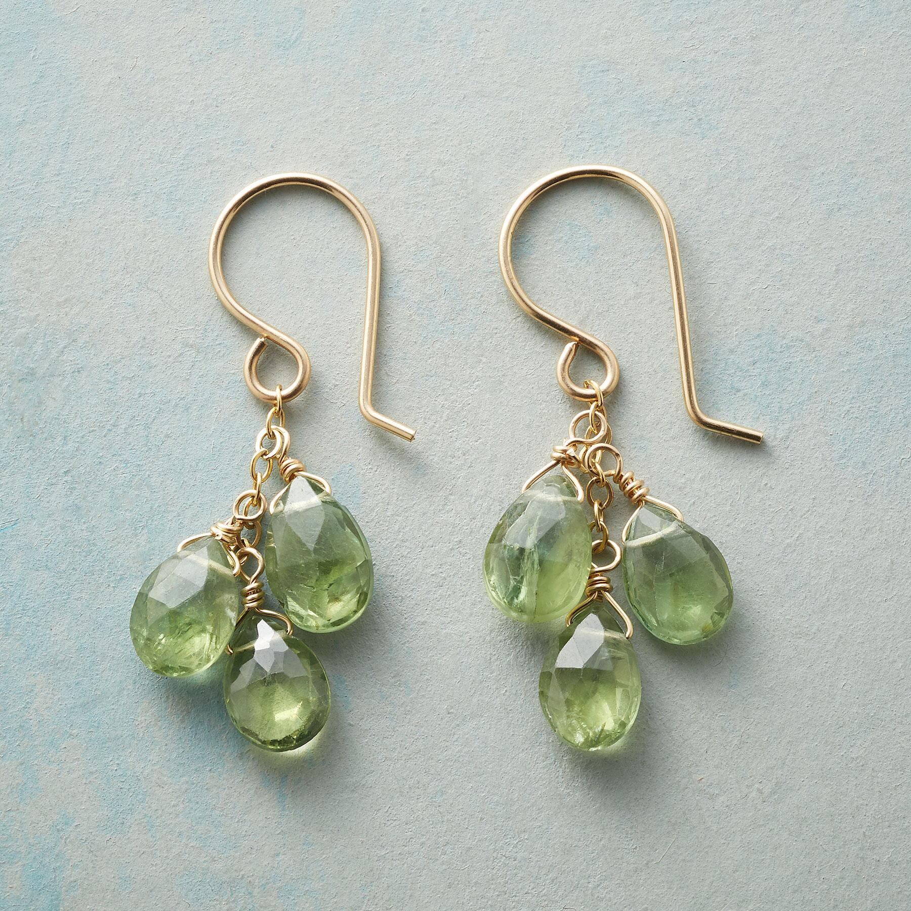 GREEN WITH ENVY EARRINGS: View 1