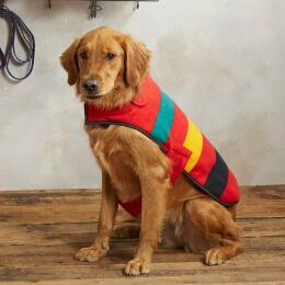 PENDLETON NATIONAL PARKS DOG COAT