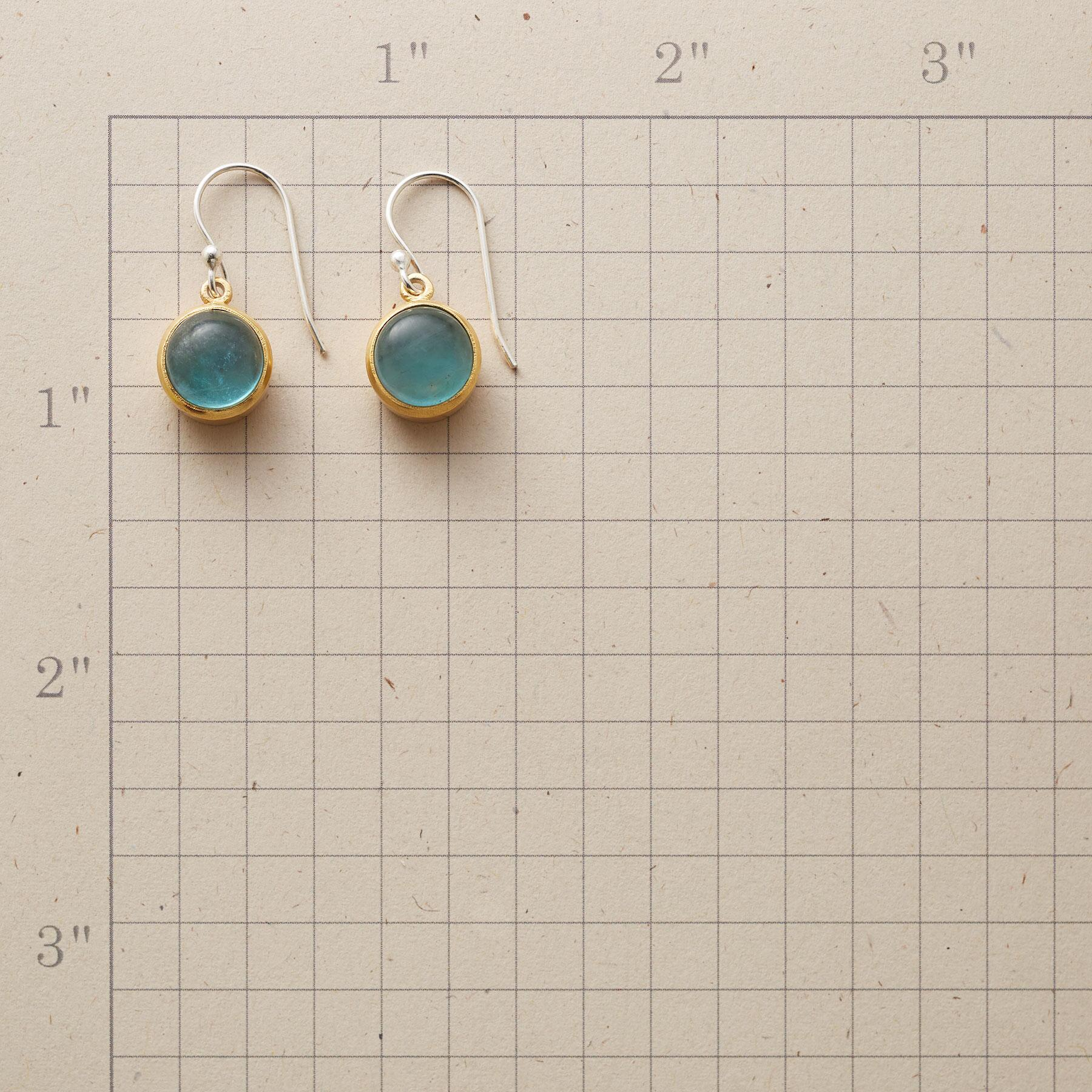 EVERGLADES EARRINGS: View 2