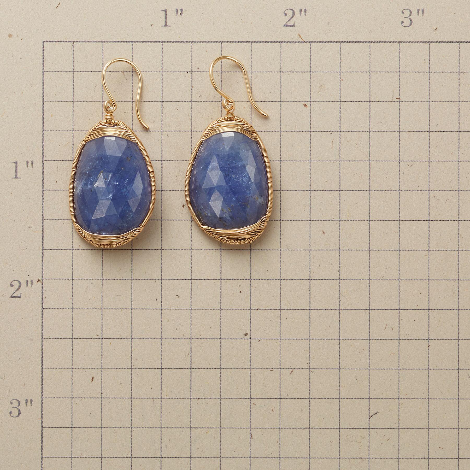 SINGING THE BLUES EARRINGS: View 2