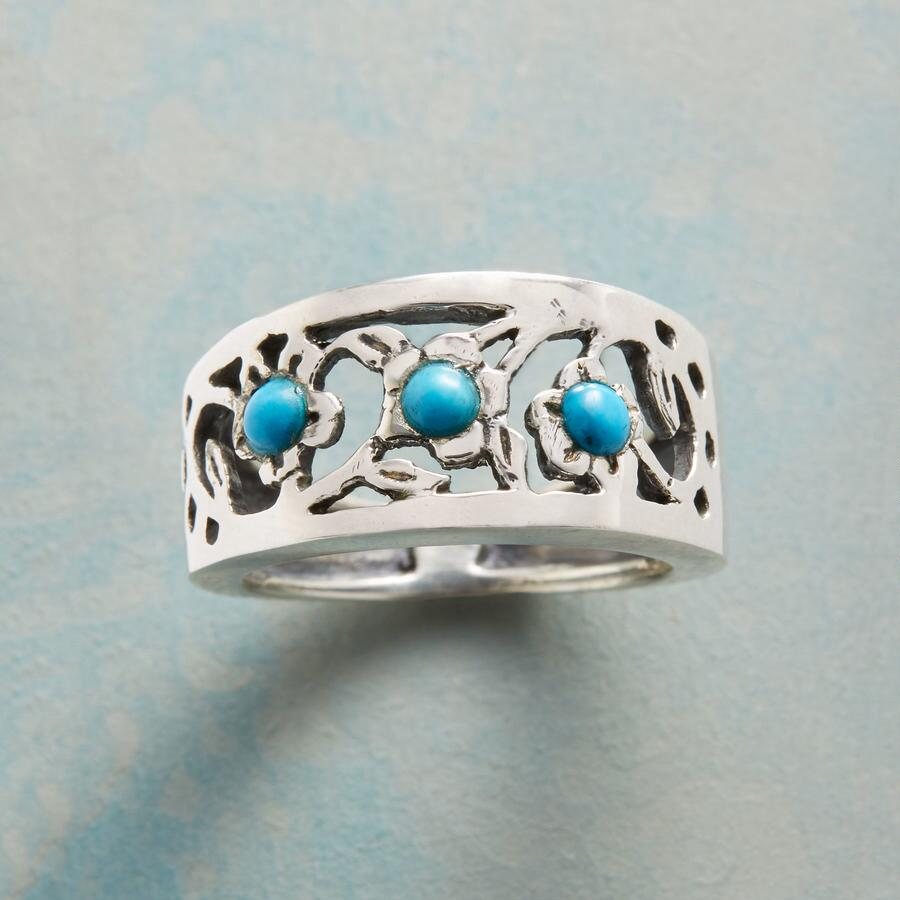 TURQUOISE ARCHWAY RING