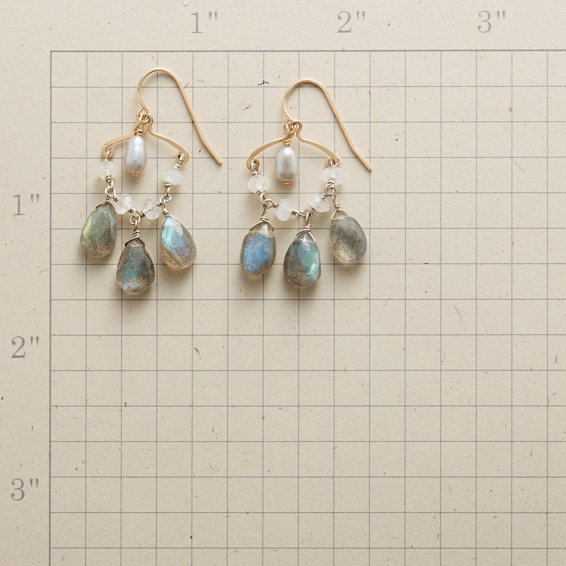 MADE IN THE SHADE EARRINGS: View 2