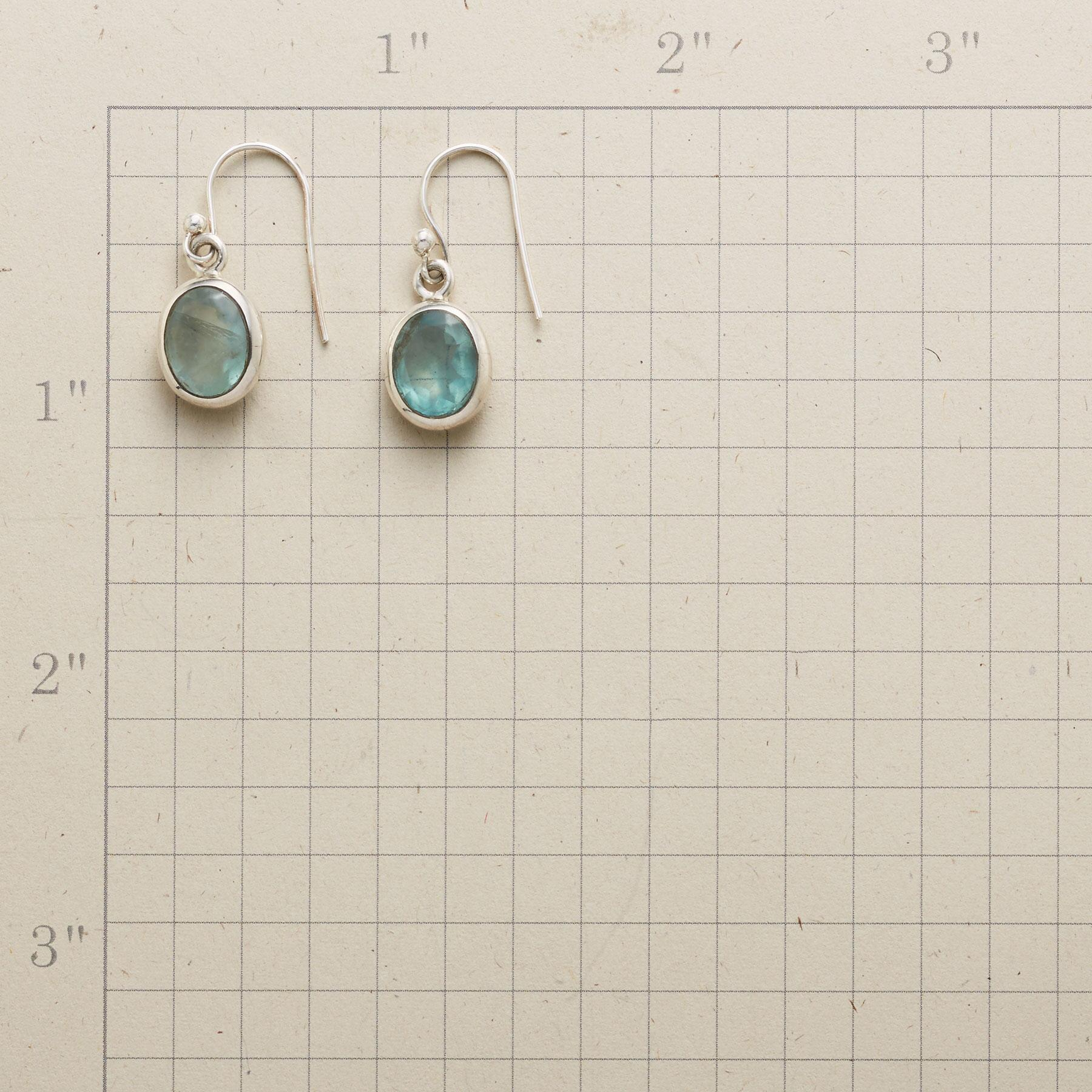 APATITE ALWAYS EARRINGS: View 2