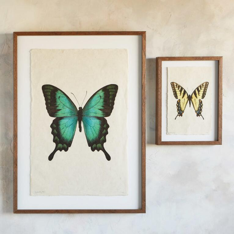 BUTTERFLY STUDIES PRINT