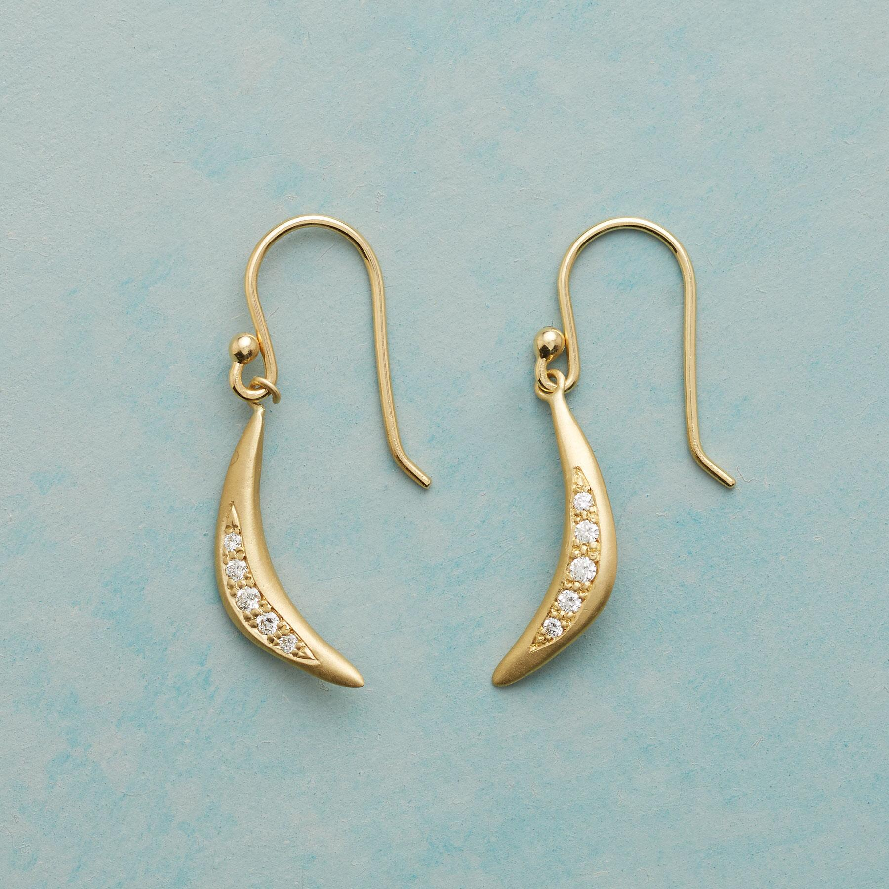 SPARKLING ARC EARRINGS: View 1