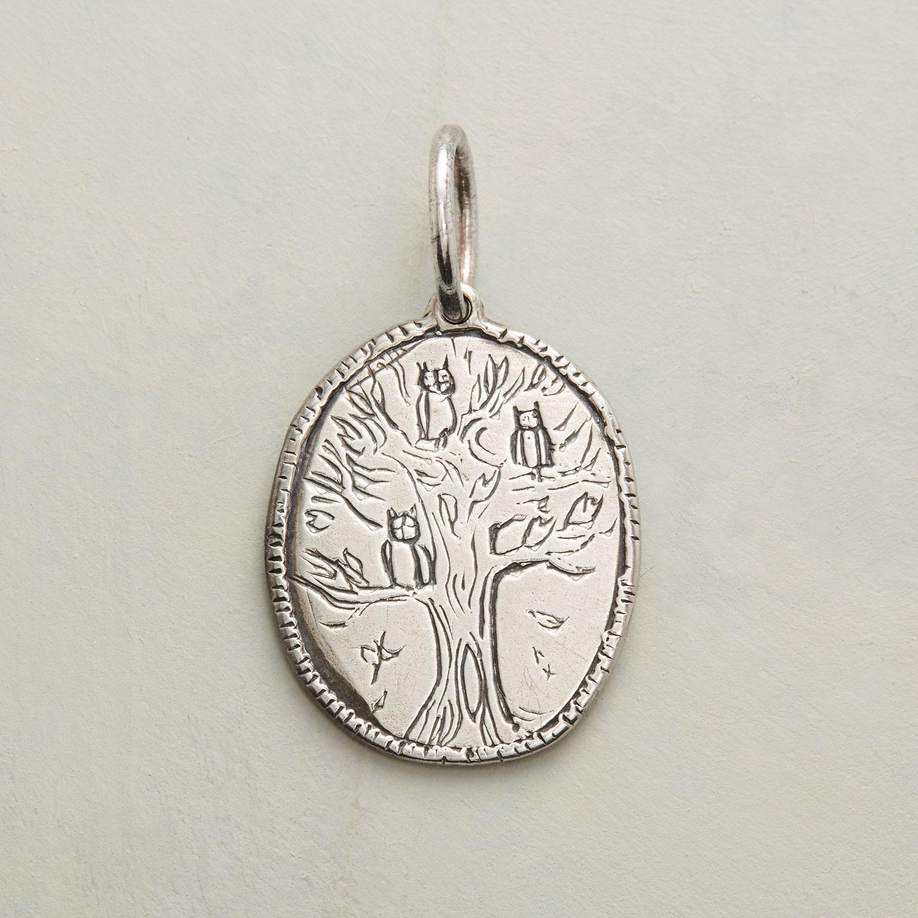 STERLING SILVER STRONG + WISE CHARM: View 1
