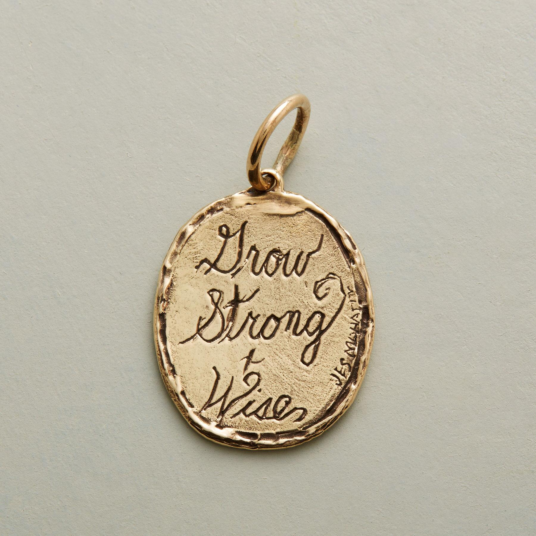 GOLD STRONG + WISE CHARM: View 2