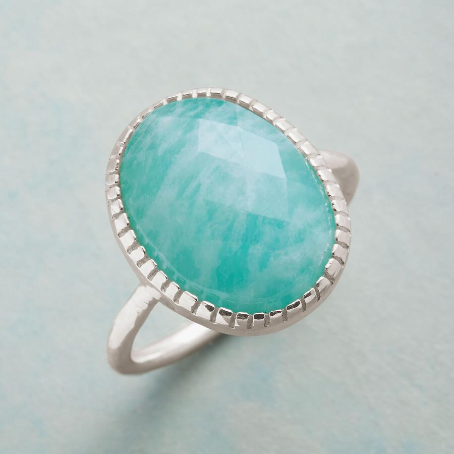 PRONG RIMMED RING