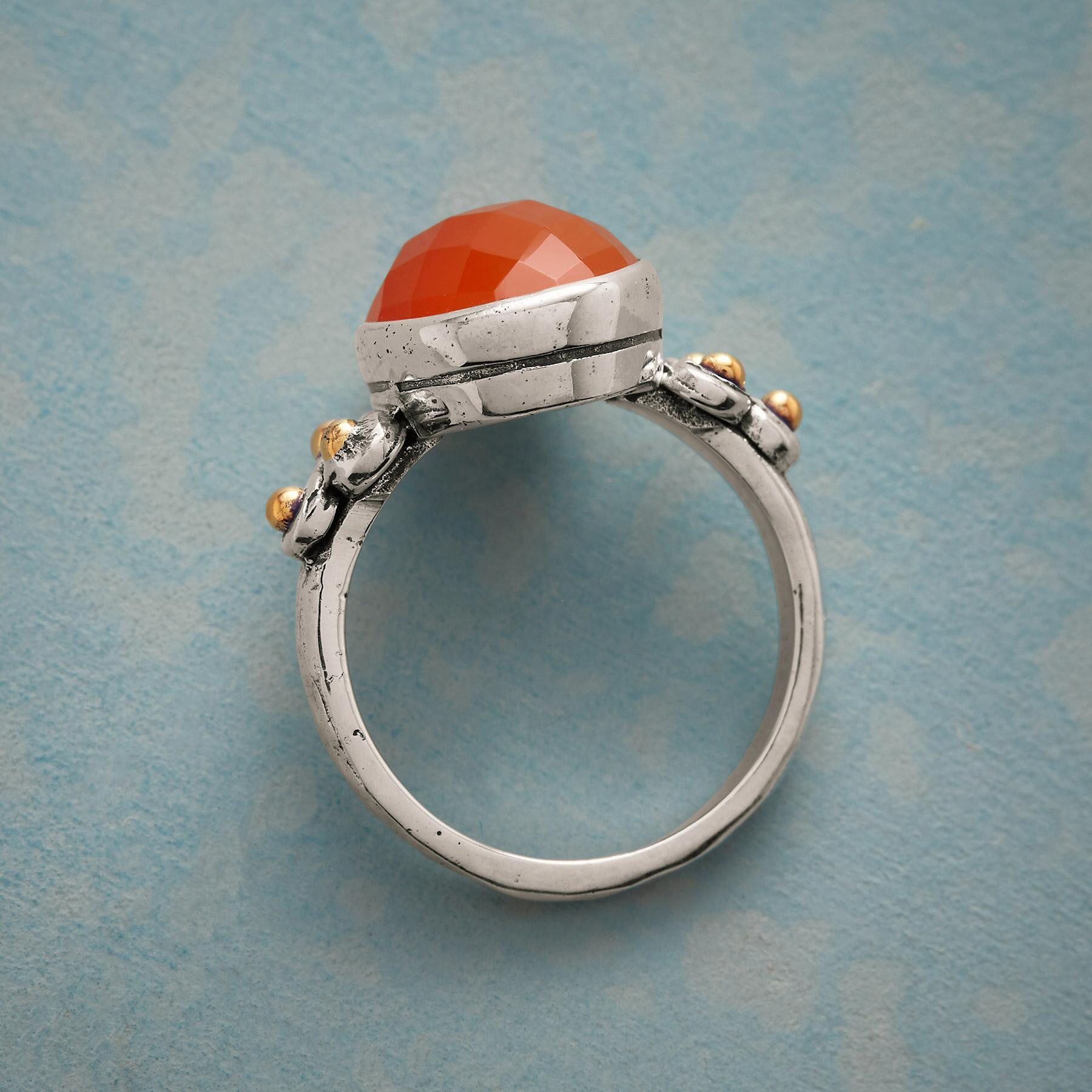 SOUTHERN EXPOSURE RING: View 2