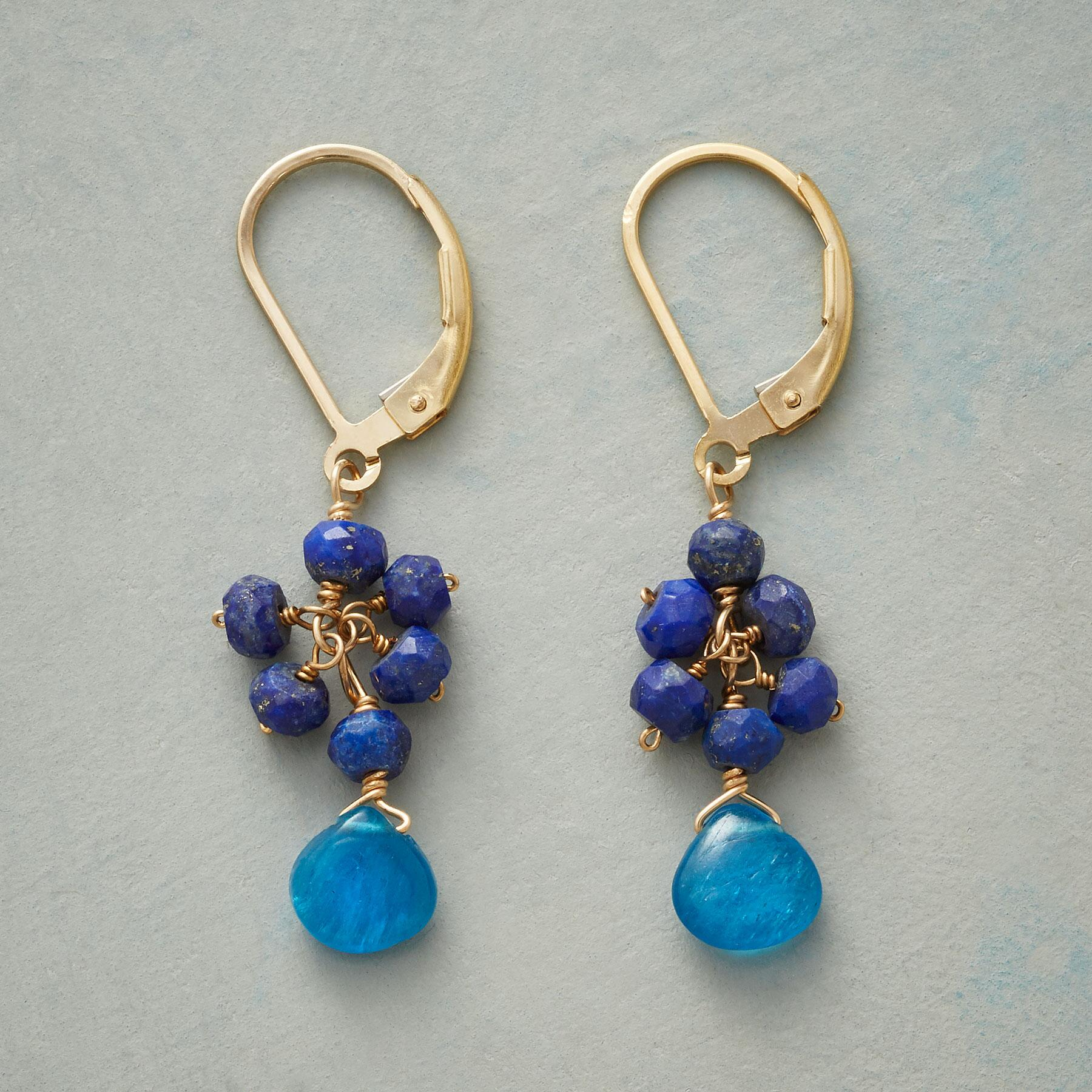 FEELIN' BLUESY EARRINGS: View 1
