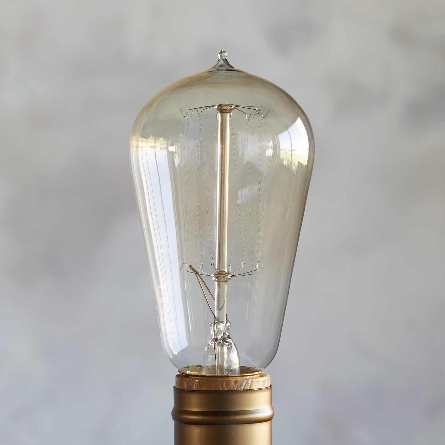 FERROWATT SQUIRREL CAGE BULB: View 2