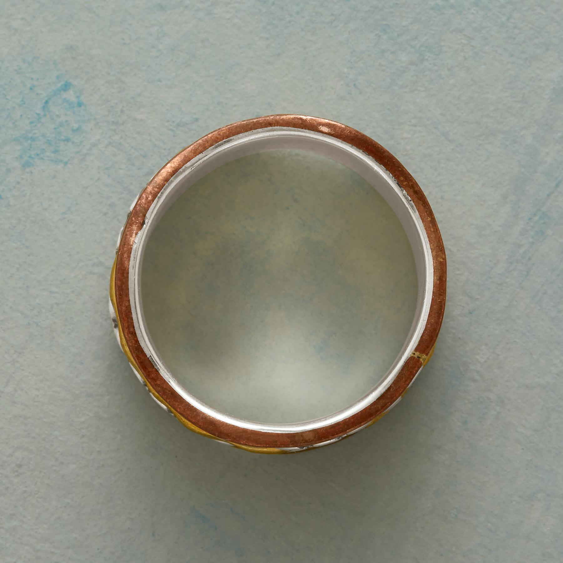 WAVES OF BRASS RING: View 2