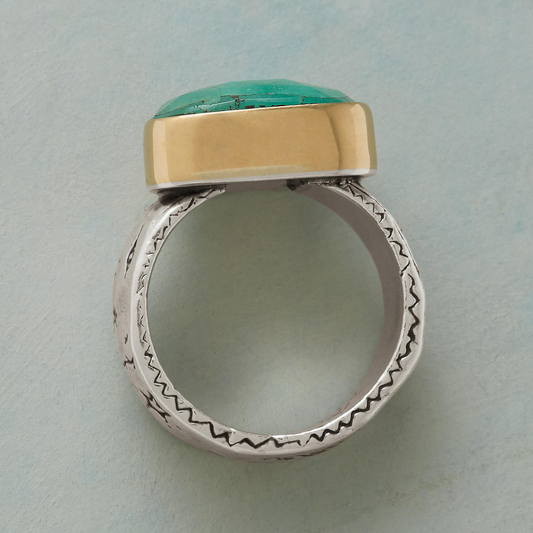 FREE RANGE RING: View 2