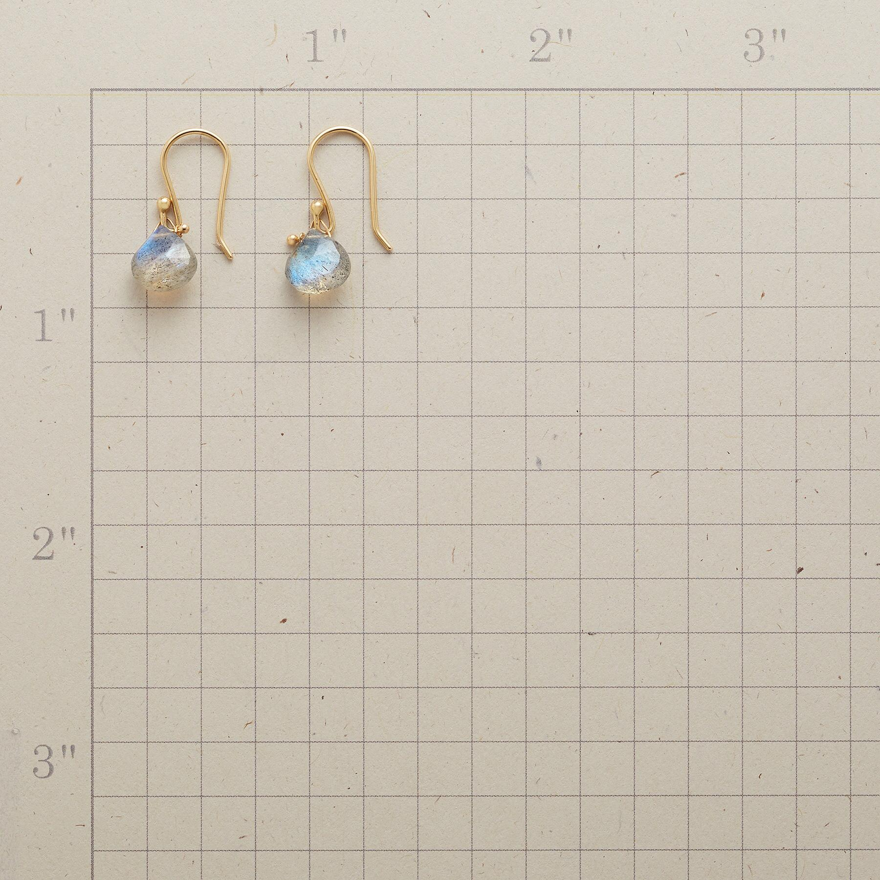 HOOKED LABRADORITE EARRINGS: View 2