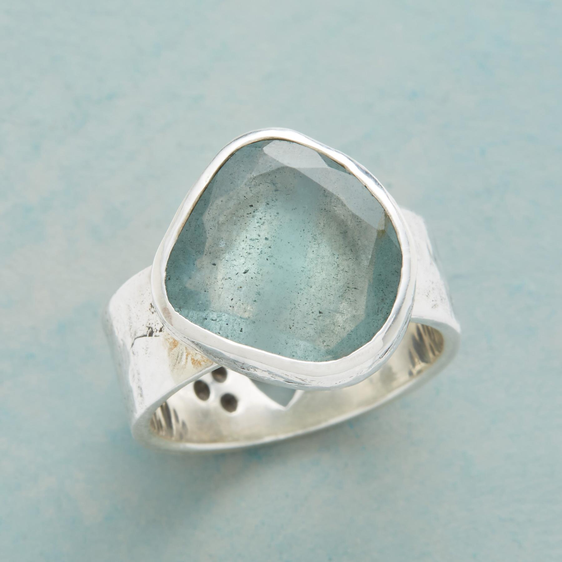 NATURE'S WAY RING: View 1