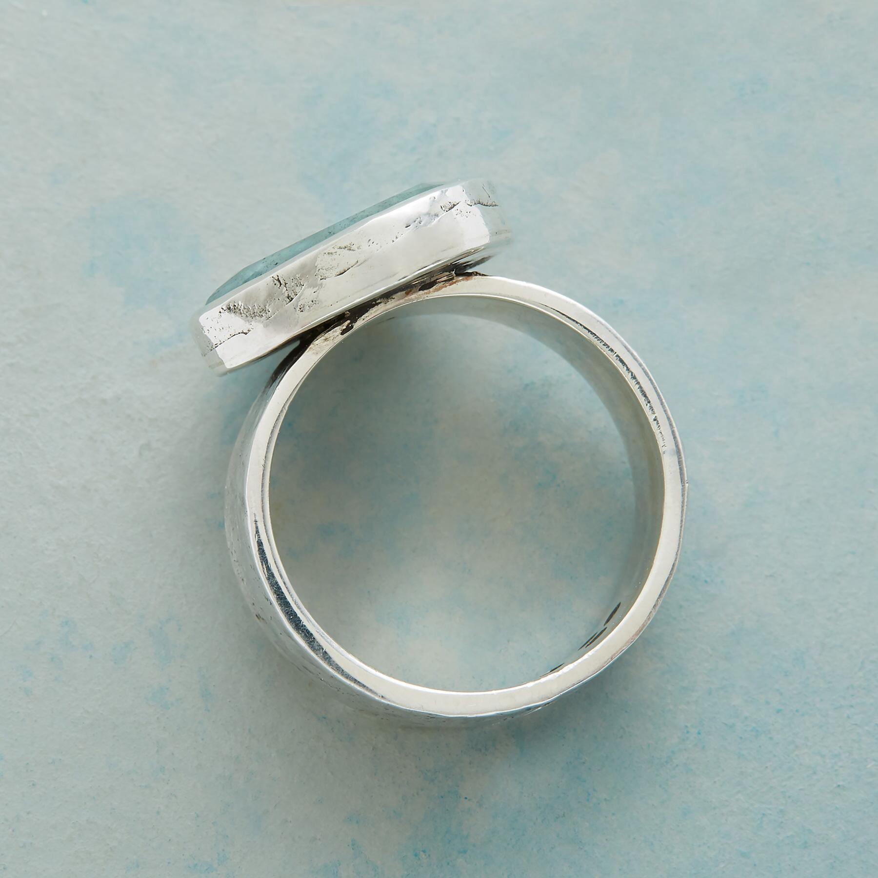 NATURE'S WAY RING: View 2