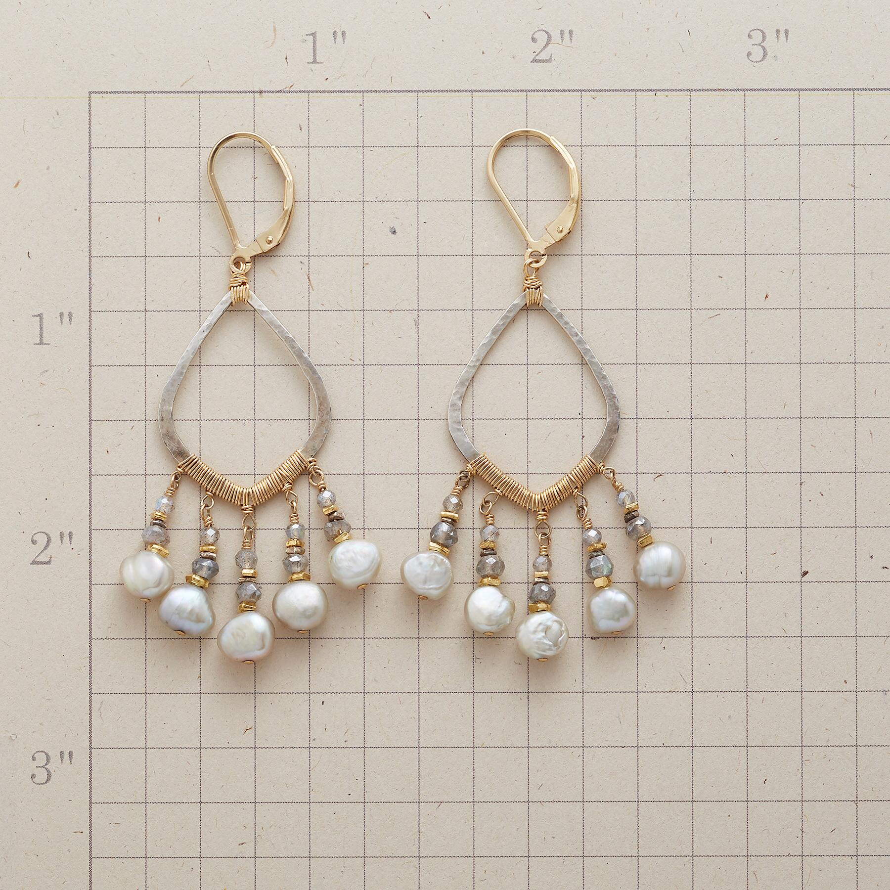 PERFECT STORM EARRINGS: View 2