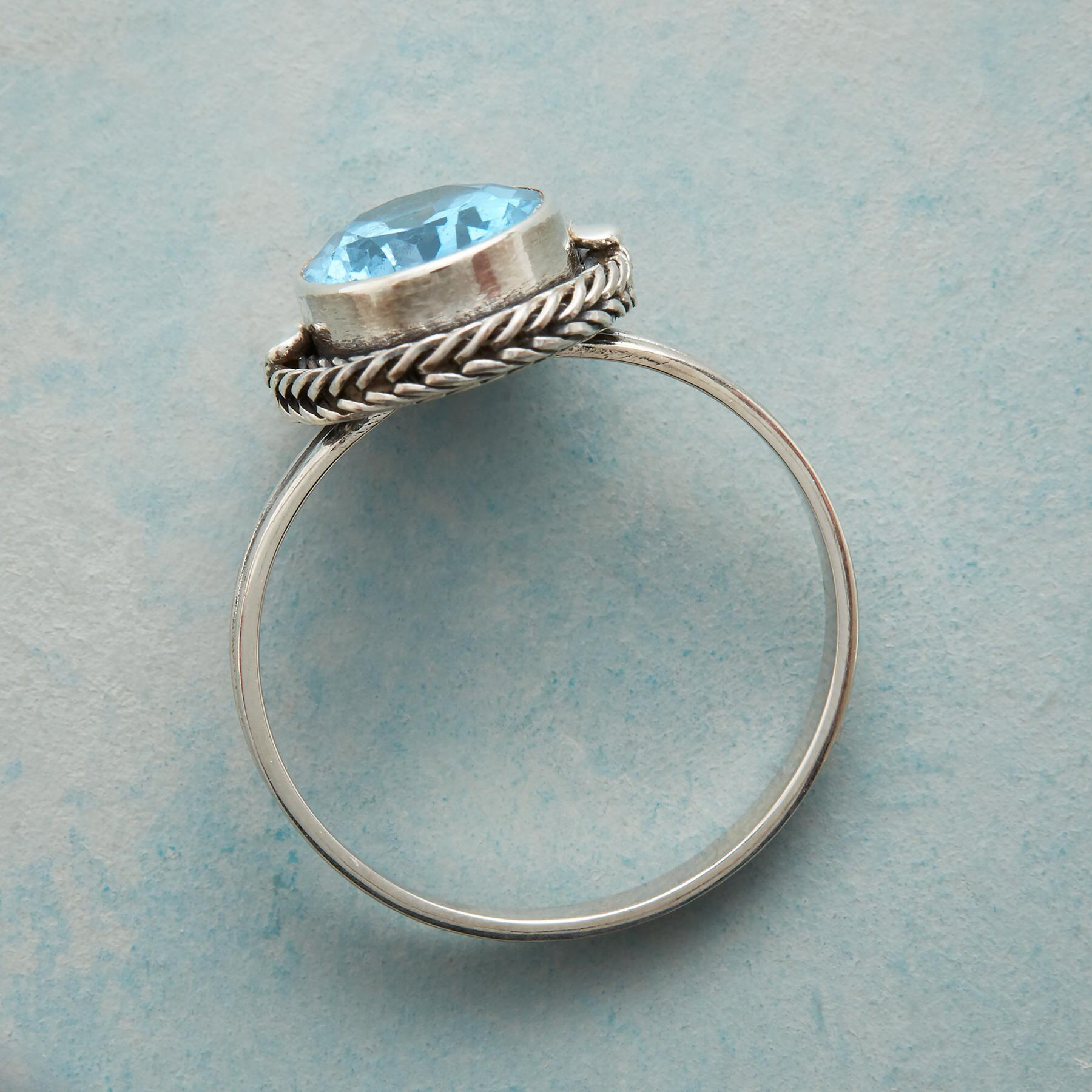 WREATHED SHORELINE RING: View 2