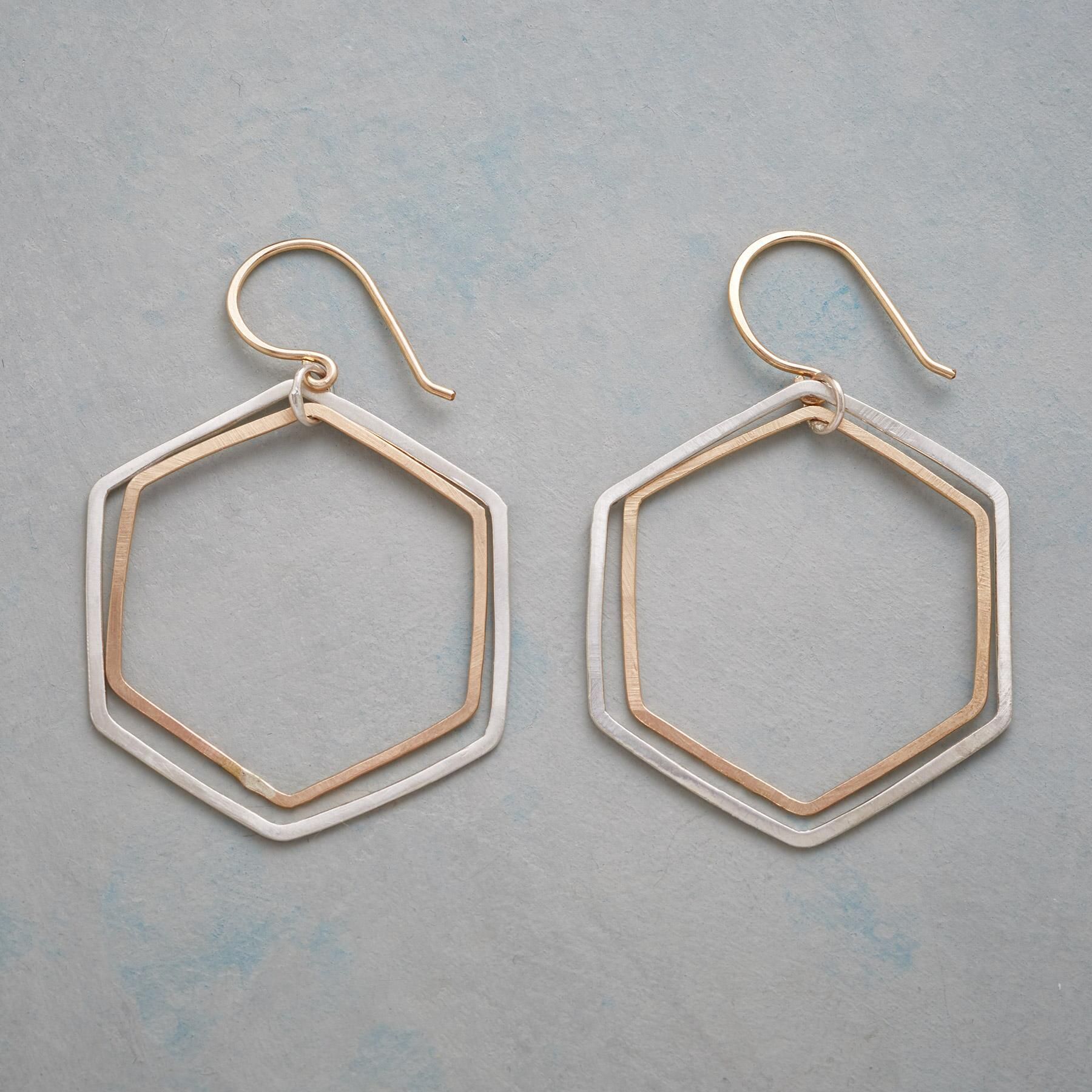 HEXAGON HOOP EARRINGS: View 1