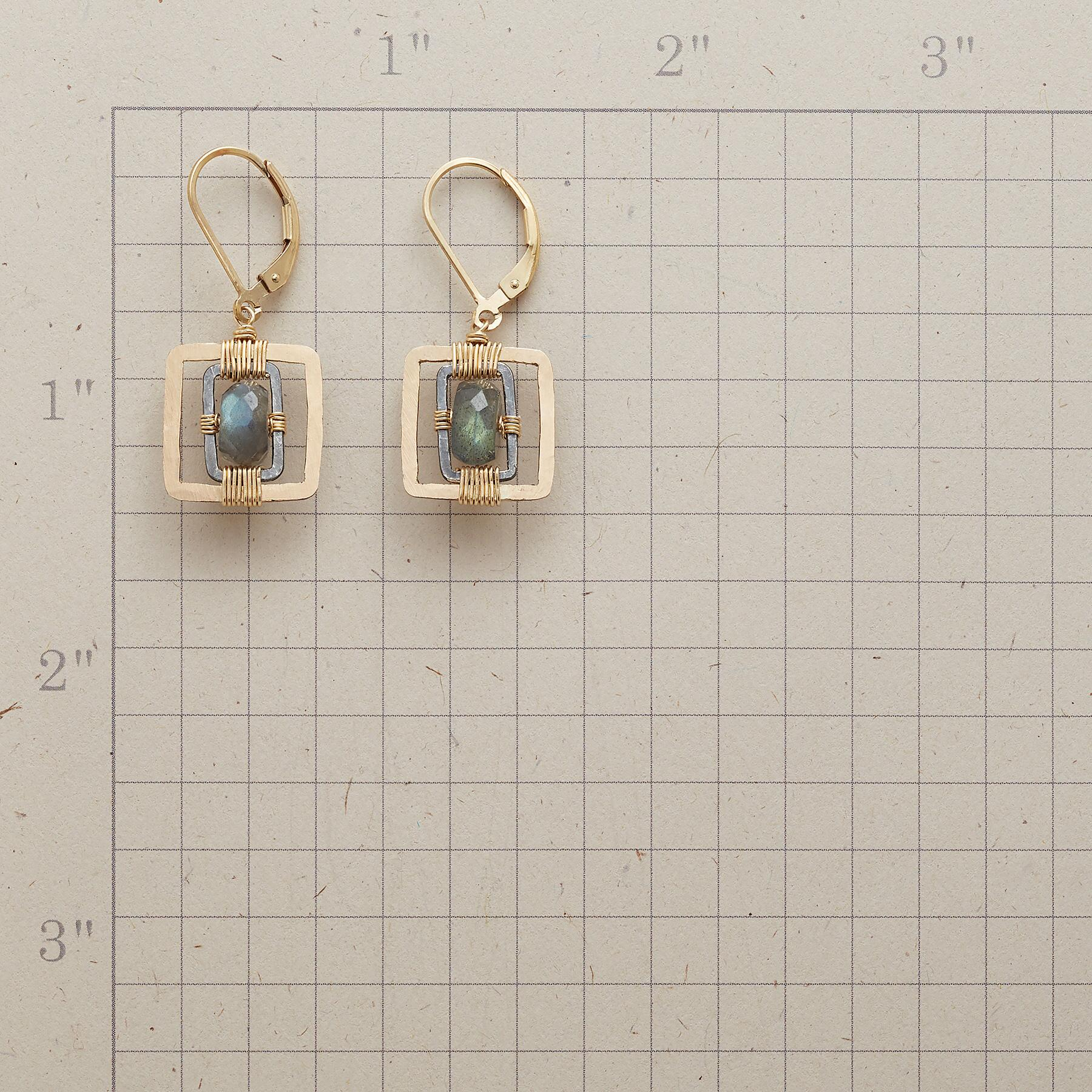 INGENUITY EARRINGS: View 2