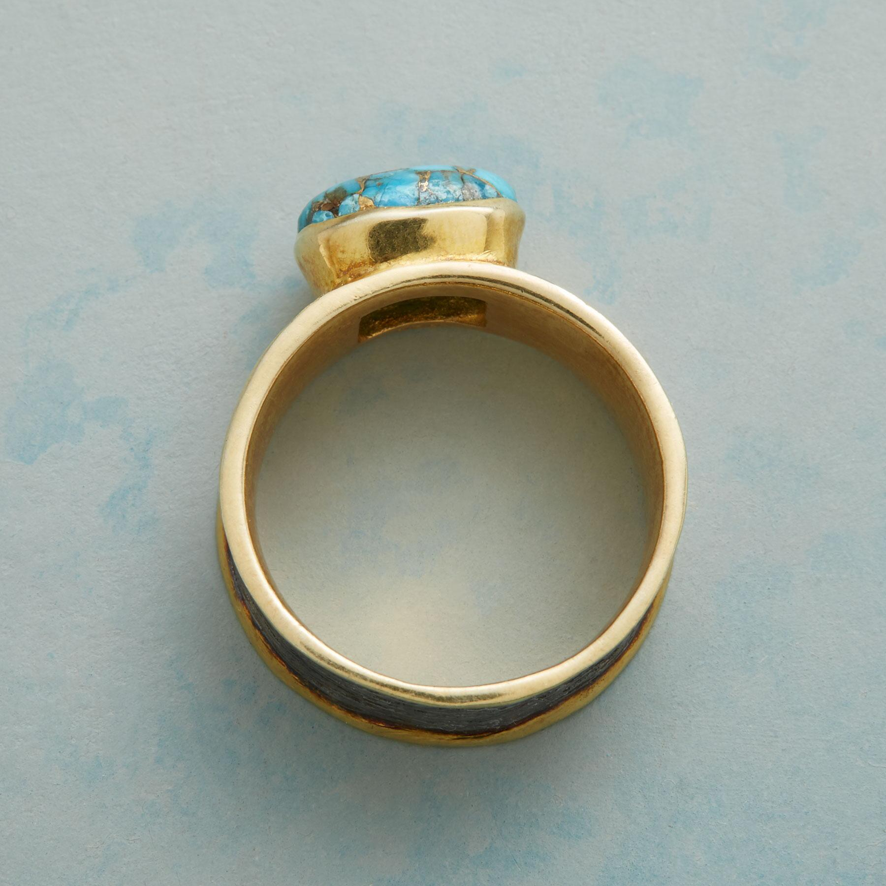 COAST OF MAINE RING: View 2