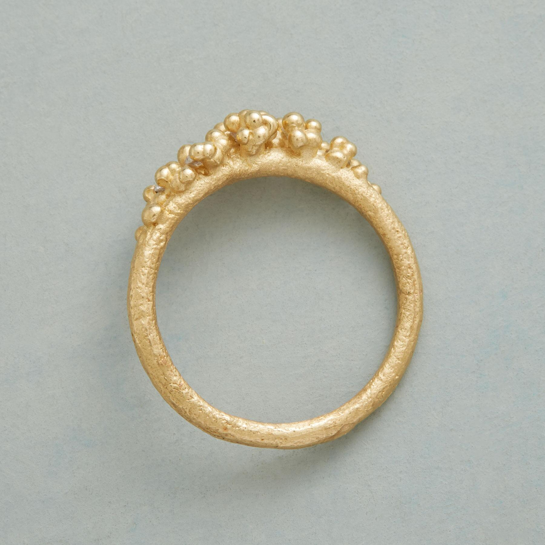 EXHILARATION RING: View 2