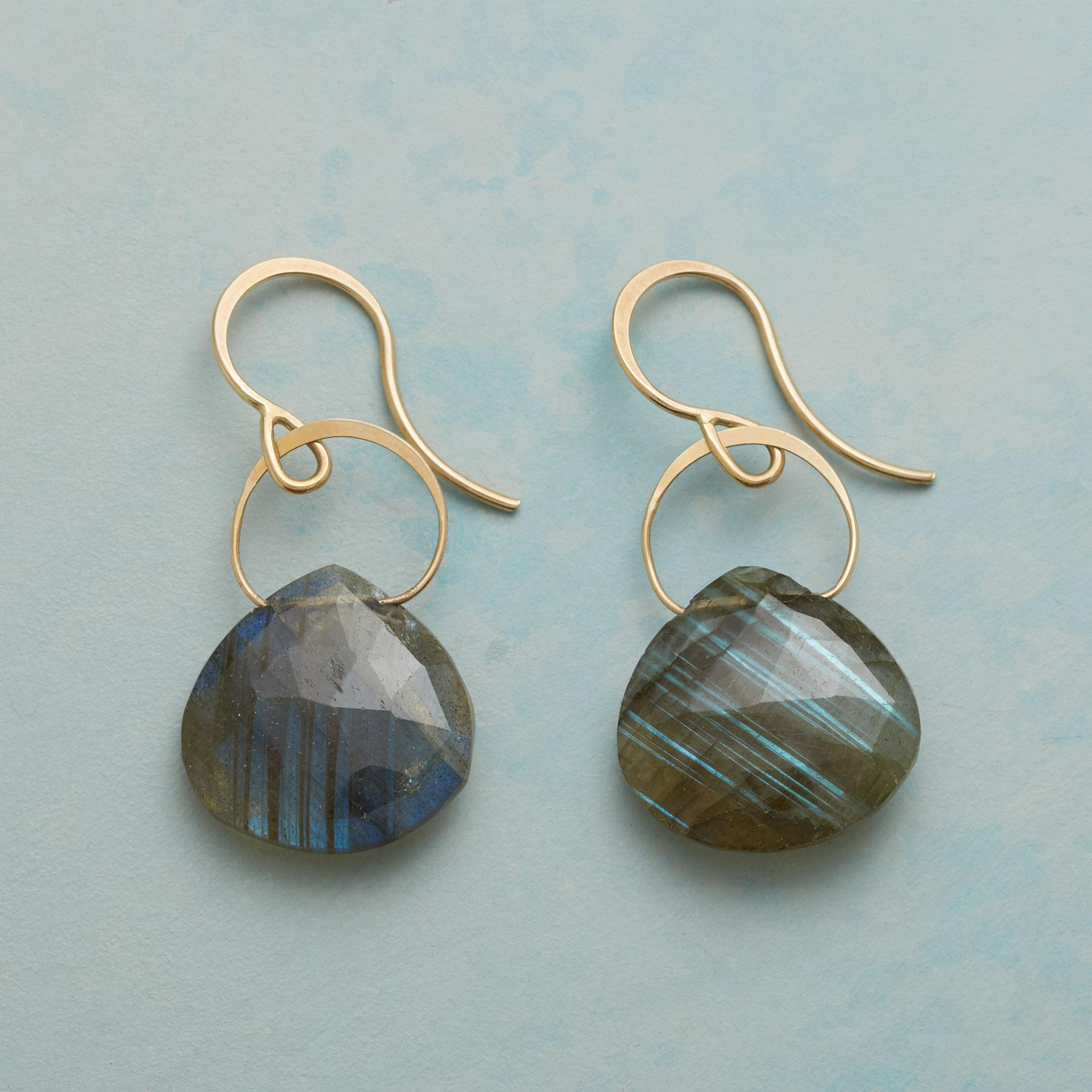 LYRICAL LABRADORITE EARRINGS: View 1
