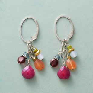 PRETTY POSSE EARRINGS
