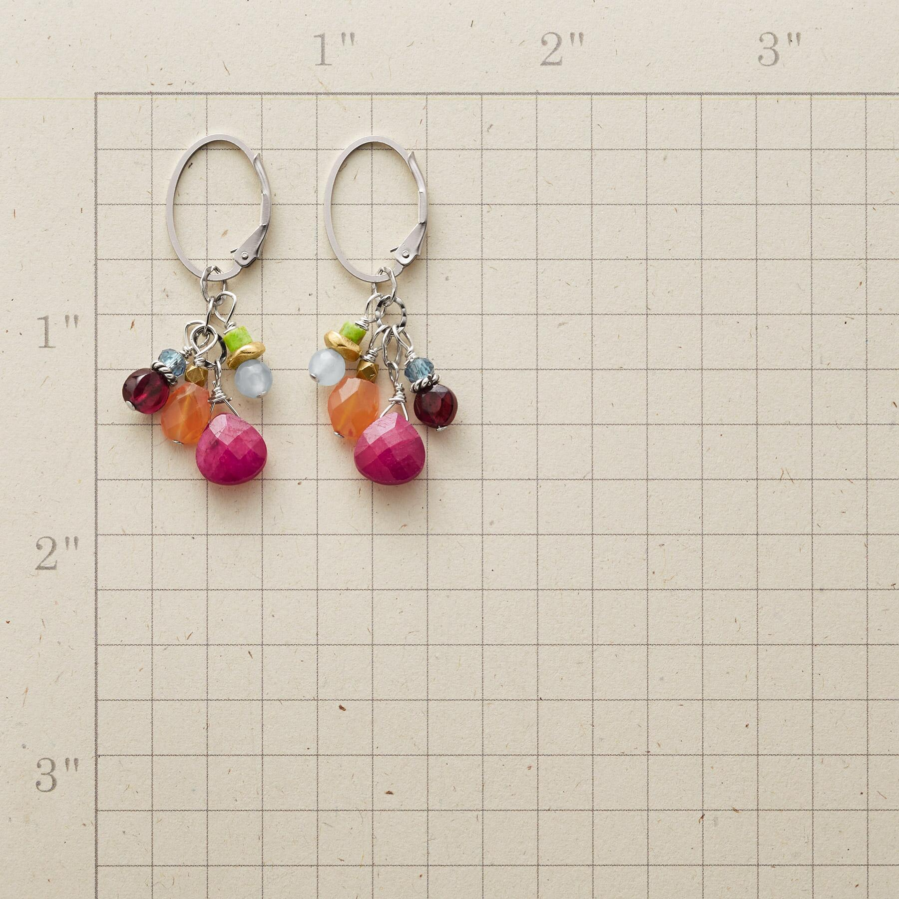 PRETTY POSSE EARRINGS: View 2