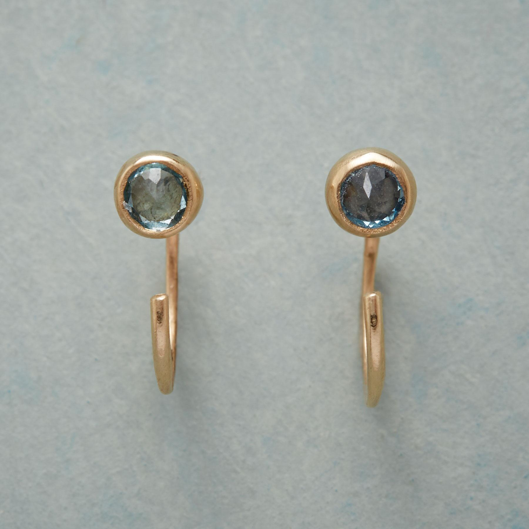 DOTTED SWISS EARRINGS: View 1