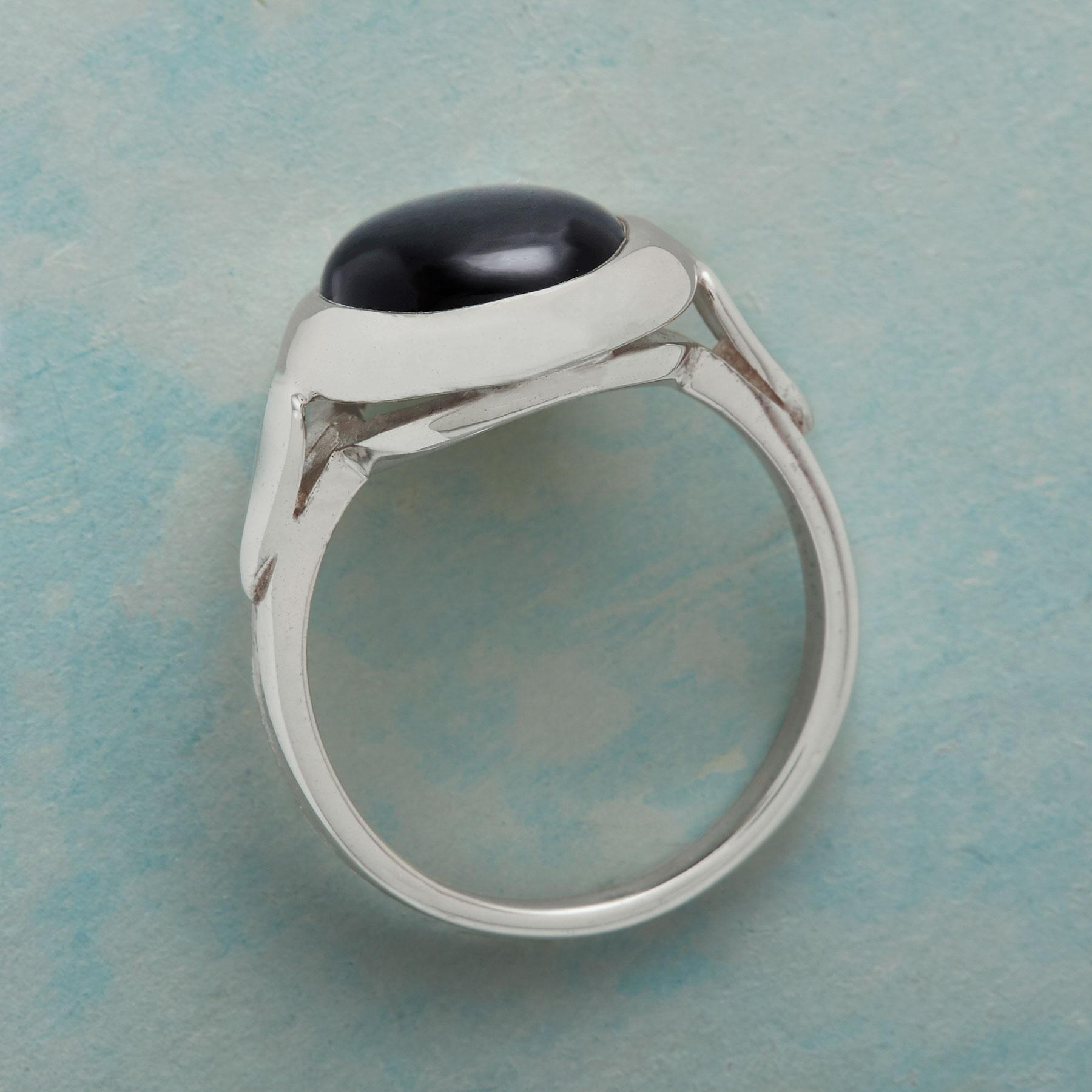 DARK SIDE OF THE MOON RING: View 2