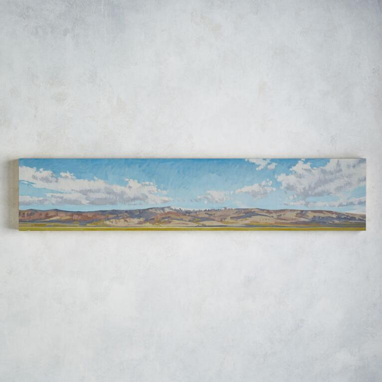 LATE SPRING, DEATH VALLEY PAINTING