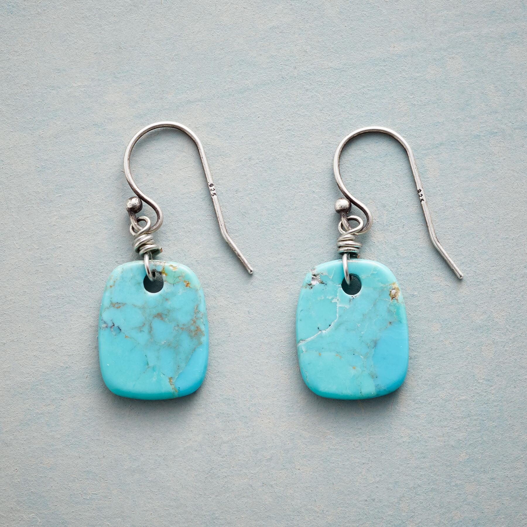 NATURE'S ART TURQUOISE EARRINGS: View 1