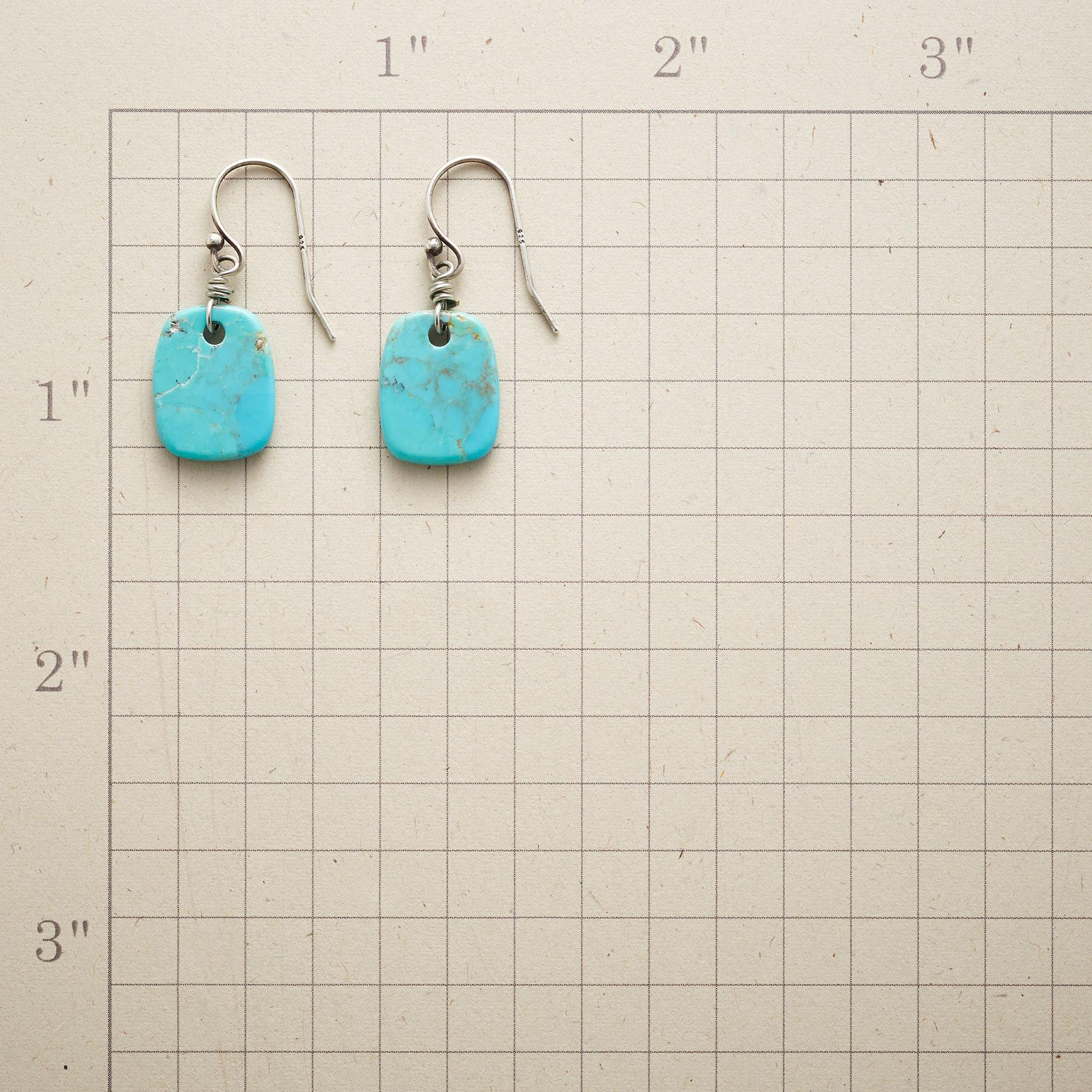 NATURE'S ART TURQUOISE EARRINGS: View 2