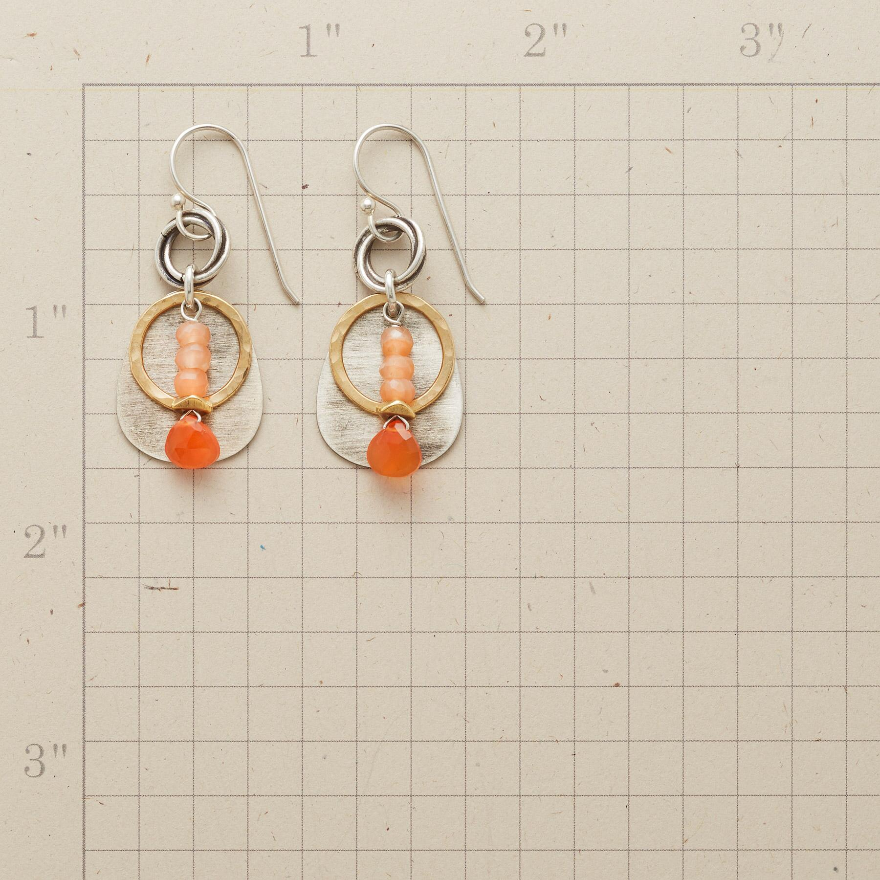 CANYON NARROWS EARRINGS: View 2