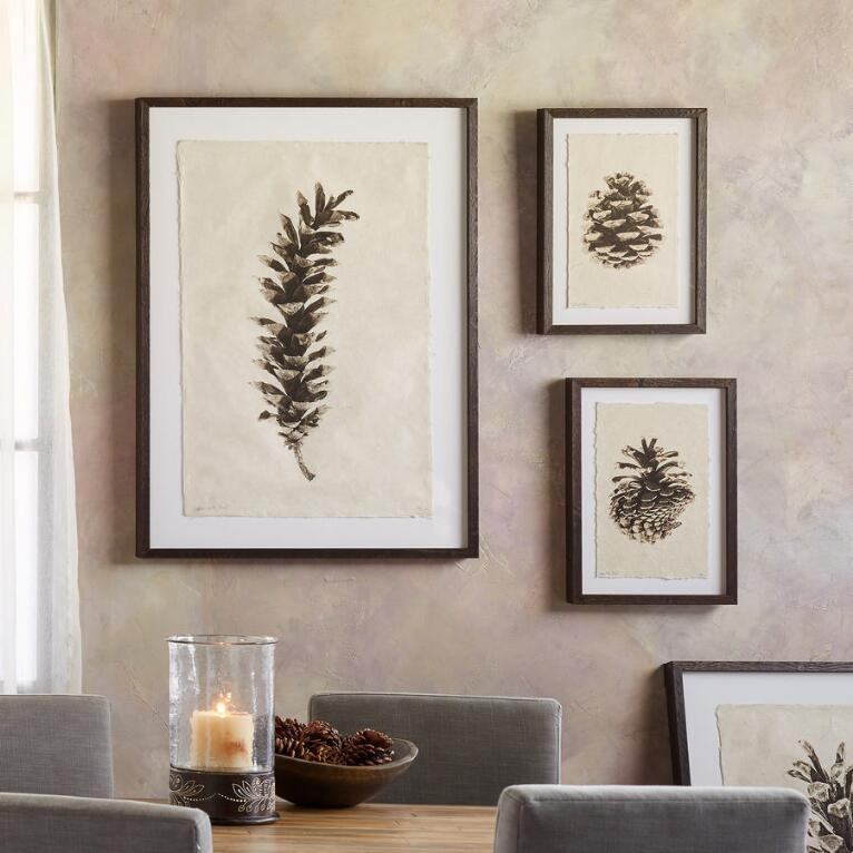 PINECONE STUDIES PRINT
